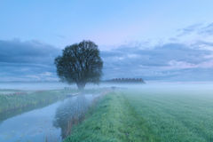 Misty morning on river Royalty Free Stock Photography