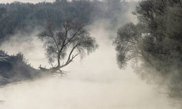 Misty morning on the river Zai Royalty Free Stock Photography