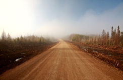 Misty Morning Road  in Spring Saskatchewan. Fog Stock Image
