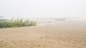 Misty morning sand beach Stock Image