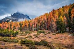Misty morning scene in National Park Tre Cime di Lavaredo. Royalty Free Stock Photography