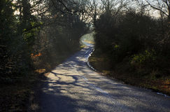 Misty morning shadows around the bend in the road Stock Photos