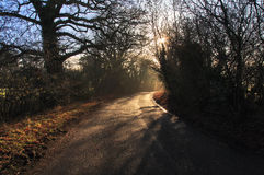 Misty morning shadows around the bend in the road Stock Images