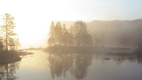 Misty morning in Norway stock video footage