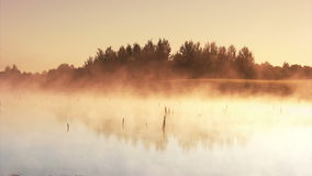Misty morning sunrise. On the marsh stock video