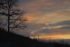 Misty Morning Sunrise Midwest River-Tal Stockbilder
