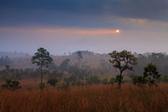 Misty morning sunrise in mountain with cloud at Thung Salang Lua Stock Photography