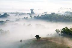 Misty morning sunrise in mountain at Khao-kho Phetchabun,Thailan Royalty Free Stock Photography
