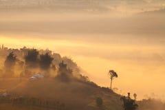 Misty morning sunrise in mountain at Khao-kho Phetchabun,Thailan Stock Image