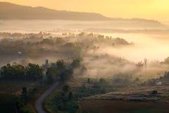 Misty morning sunrise in mountain at Khaokho Phetchabun,Thailand Royalty Free Stock Image