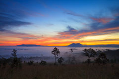Misty morning sunrise in mountain Thung Salang Luang National Park Royalty Free Stock Photography
