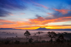 Misty morning sunrise in mountain Thung Salang Luang National Park Stock Images