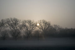 Misty Morning Sunrise Stock Photo