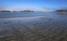 Misty Morning on a Tofino Beach Stock Photography