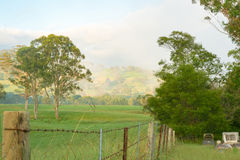 Misty morning in the valley. Royalty Free Stock Photography