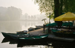 Misty morning view Royalty Free Stock Image
