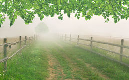 Misty morning in the village Stock Images