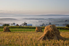 Misty Morning Wheat. Oat shocks in field overlooking rural farming valley in early morning fog Stock Photography