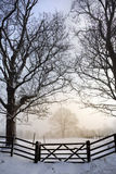 Misty Morning - Winter Snow - England royalty free stock images