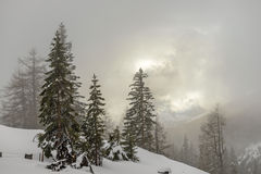 Misty morning in winter mountains Stock Image