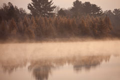 Misty morning in Wisconsin Royalty Free Stock Images