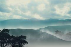 Misty Mountain Stock Photos