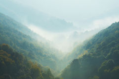 Misty mountain Royalty Free Stock Photos