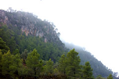 Misty Mountain Cliff royalty free stock photography