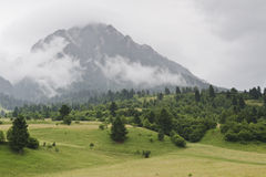 Misty mountain in countryside Royalty Free Stock Image