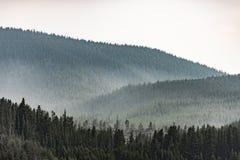 Misty mountain foothills, dark green royalty free stock photo