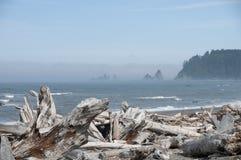 Misty Mountain Island mit Treibholz an Rialto-Strand Olympischer Nationalpark, WA stockfotografie