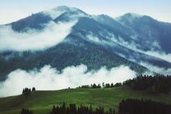 Misty mountain landscape stock photo