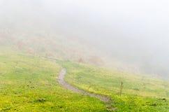 Misty mountain landscape Stock Photography