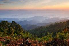 Misty Mountain at morning, chiangmai,Thailand Stock Photos
