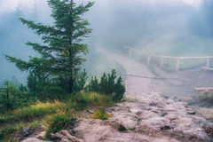 Misty mountain path Stock Images