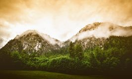 Misty mountain range and forest