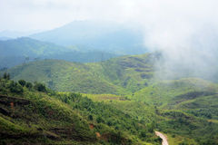 Misty mountain Stock Images
