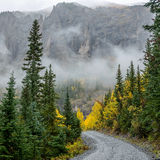 Misty Mountain Trail - Square Stock Photo