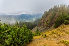 Misty mountain valley scene Stock Photo
