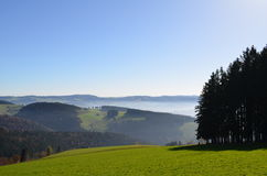 Misty mountains in the Black Forest in Germany Stock Photography