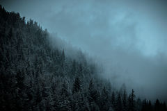 Misty Mountains, Bulgarie Images libres de droits