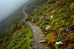 Misty mountains and hiking trail. Alpine landscape with hiking trail going on the mountain in the mist Royalty Free Stock Photo