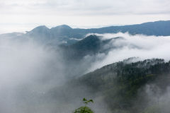 Misty mountains landscape view Royalty Free Stock Image