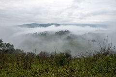 Misty mountains landscape view Royalty Free Stock Photos
