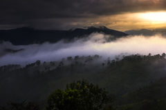 Misty mountains landscape view Stock Photography