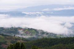 Misty Mountains med risterrassen royaltyfria bilder