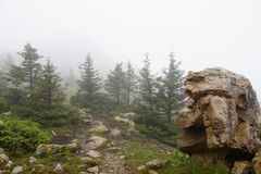 Misty and mysterious forest. The Mountain ` Zyuratkul.` Ural. Autumn stock images