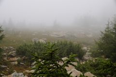 Misty and mysterious forest. The Mountain ` Zyuratkul.` Ural. Autumn royalty free stock photography