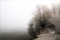 misty nad jezioro. Zdjęcia Royalty Free
