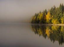 misty nad jezioro Zdjęcie Royalty Free